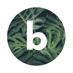 Green and Grace Blogi icon